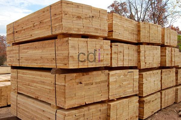 Daftar Harga kayu nyatoh vs meranti di Pondok Cina Depok 1