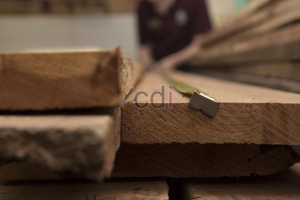kayu-2