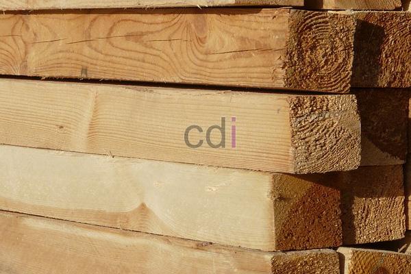 Harga per batang kayu lapis meranti area Cisauk Tangerang 1