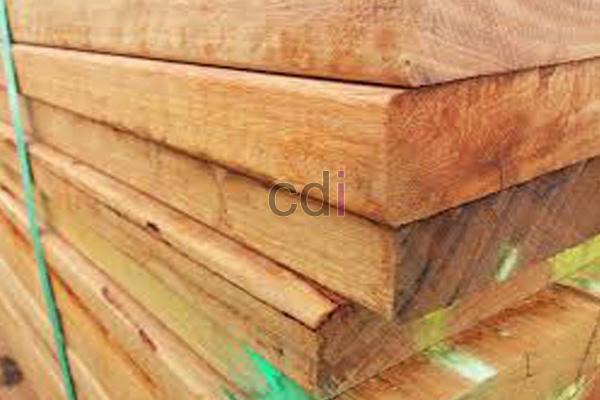 Harga Jual kayu sengon diameter 30 cm daerah Kebon Kosong Jakarta 1