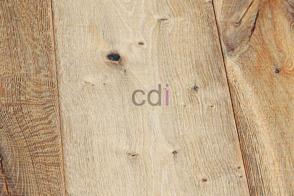 kayu14