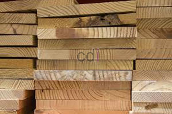 kayu19