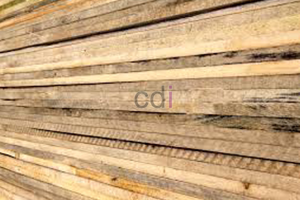 Harga per batang kayu meranti dimanfaatkan untuk area Srengseng Sawah Jakarta 1
