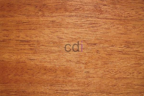 Jual kayu jati 1 kubik wil Solear Tangerang 1