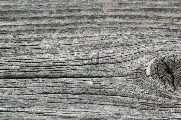 kayu28