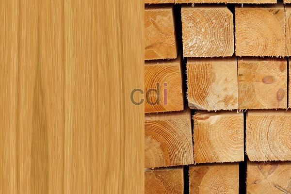 kayu35