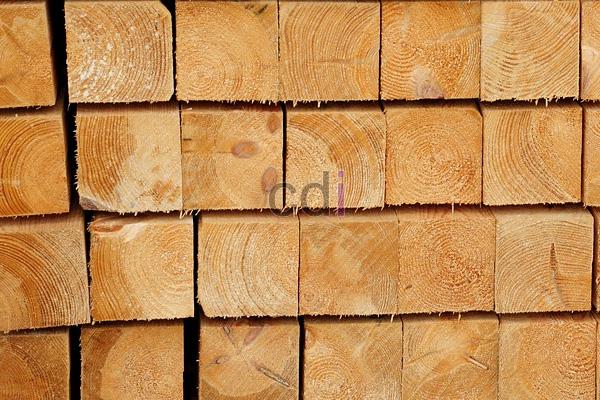 Daftar Harga getah kayu merbau wil Babakan Cikao Purwakarta 1