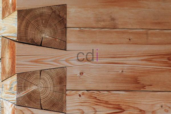 kayu39