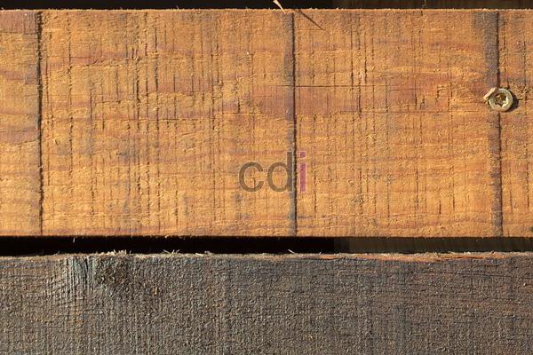 kayu40