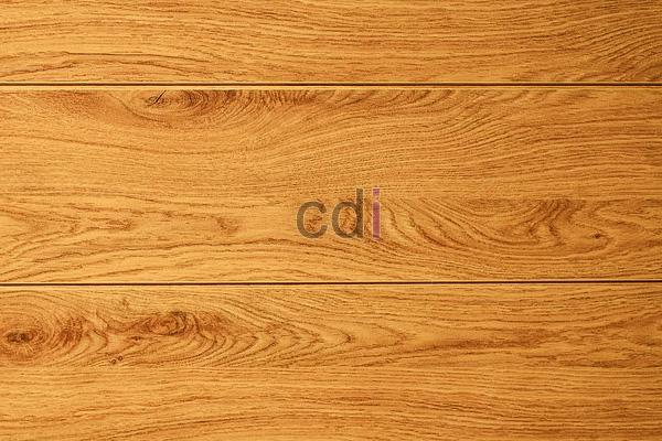 kayu41