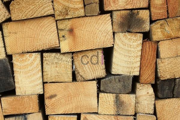 kayu43
