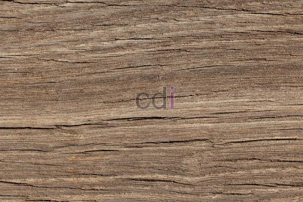 List Harga kayu meranti dan manfaatnya di Campaka Purwakarta 1
