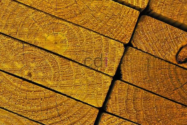 Lokasi Penjualan kayu meranti jambi daerah Cireunghas Sukabumi 1