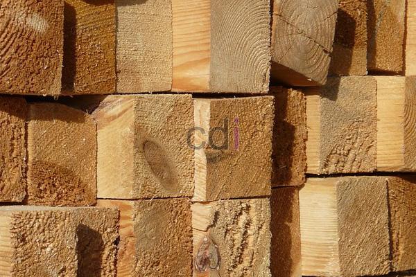 Daftar Harga kayu meranti batu vs kamper daerah Cipayung Jakarta 1