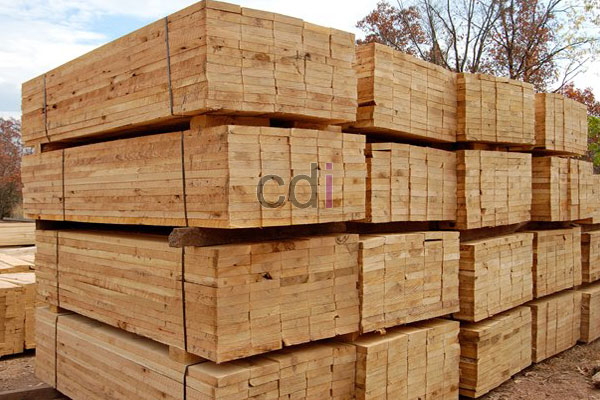 perbandingan harga kayu