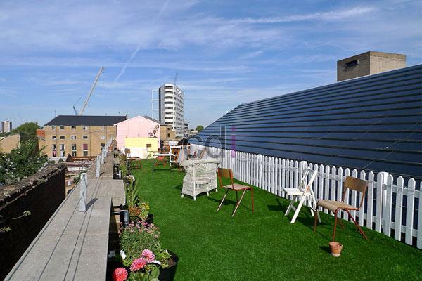 Contoh membuat taman diatas dak lantai atap